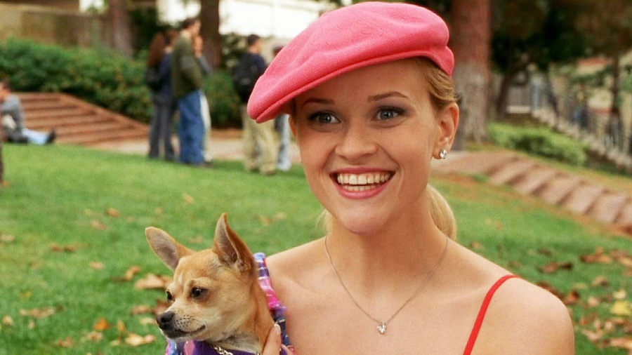 Elle Woods holding Bruiser and wearing a pink newsboy cap on her head